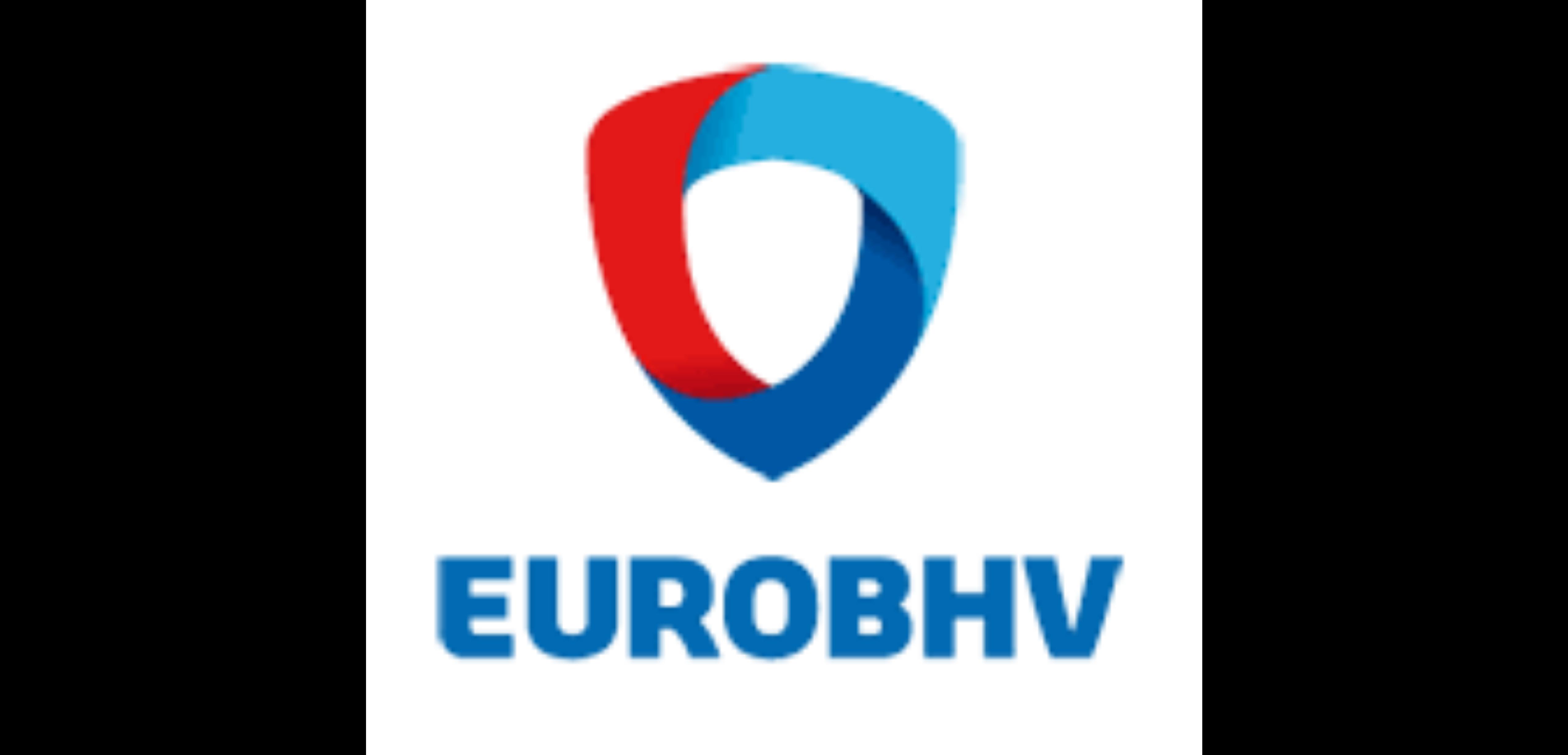 Logo Euro BHV op website